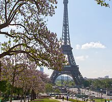 Paris Spring Time by Adrian Alford Photography