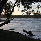 Murray River, South Australia by indiafrank