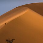 Dune 45 by Neville Jones