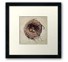 Yoshi Eggs Framed Print