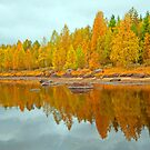 Autumn in Norway by julie08