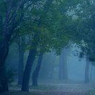 Green Mist by WildThingPhotos