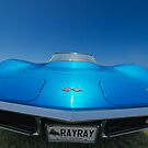 RAYRAY by barkeypf