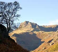 The Cumbrian Way by Mike  Waldron