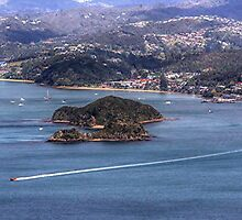 Paihia, Bay of Islands, New Zealand.....from the air.....! by Roy  Massicks