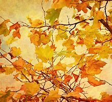 Autumn Leaves with Texture Effect by Natalie Kinnear
