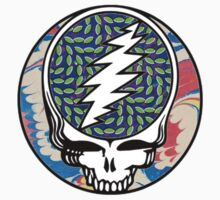 grateful dead animal collective by dontclothing