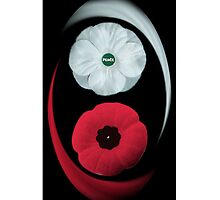 POPPIES ~ PEACE  & REMEMBRANCE GO TOGETHER UNITED WE STAND IPHONE CASE by ╰⊰✿ℒᵒᶹᵉ Bonita✿⊱╮ Lalonde✿⊱╮