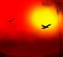 Haiga by Ron C. Moss