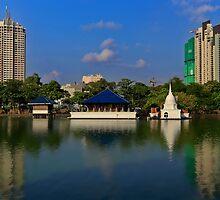 Colombo Lake by Tam Church