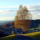 Country road to Helfenberg by Patrick Jobst
