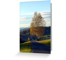Tree, road and indian summer evening II | landscape photography Greeting Card