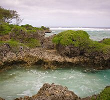 Tonga - Water flow #2 by Derek  Rogers