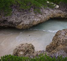 Tonga - Water flow #3 by Derek  Rogers