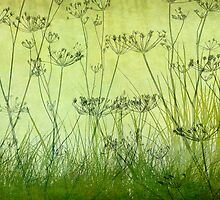 Wildflower Silhouettes Lime by Cora Niele