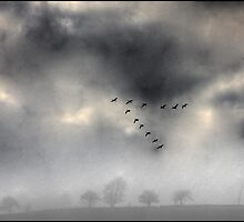 Flying into a Gathering Storm by Wayne King