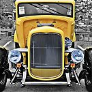 Yellow Rod by Monte Morton