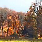 Autumn Farm With Harrow by Susan Savad