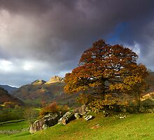 Langdales Light by Jeanie