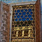 Harem Window by Barbara  Brown