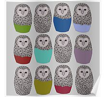 Bright Line Up of Owls Poster