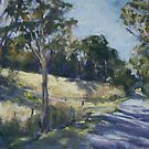 Coomba Park Road by Terri Maddock