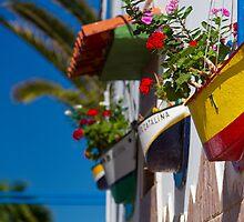 Arguineguín, little harbour village detail by Lex Thoonen