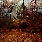 Seasonal Autumn Road by PineSinger