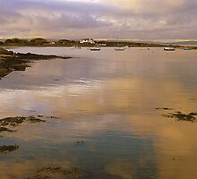 The Ards Peninsula by Fara