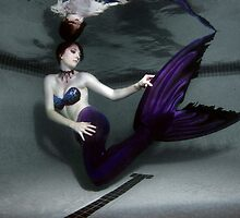 Mermaid by Greg Amptman