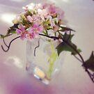 Sunday Flower ~  by Emma  Wertheim