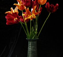 Fiery tulips by Terry Cripps