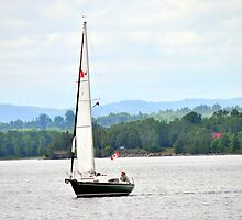 Sailing on the Ottawa River by goddarb