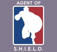 Agent of SHIELD - Captain America by TheQuickTech