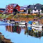 River Reflections by Paula Oakley