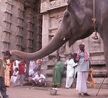 Blessing from Ganapathi, Arunachaleswar temple by indiafrank