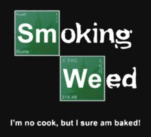 Smoking Weed (Breaking Bad) by designCENTRAL
