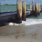 Shoalwater Beach by lezvee