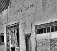 Harry's Garage  by Steve St.Amand
