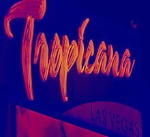 Tropicana   by Steve St.Amand