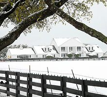 "Southfork Ranch Home of ""Dallas"" - TV Mini-Series by Dyle Warren"