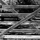Ranch Gate by James2001