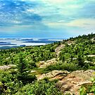 Cadillac Mountain, Acadia National Park, Maine, USA by fauselr