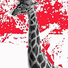 Giraffe Abstract In Red by korokstudios