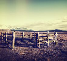 The fence by Pascal Deckarm