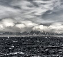The clouds, the sea, the mountains...and a bird by Pascal Deckarm