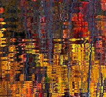 Abstract Autumn Leaves Water Reflection by Jamie Roach