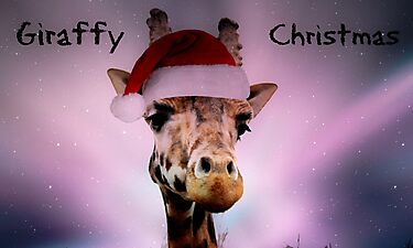 Giraffy Christmas by Ladymoose