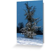 Fir Tree and snow Greeting Card