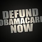 Defund Obamacare Now by morningdance